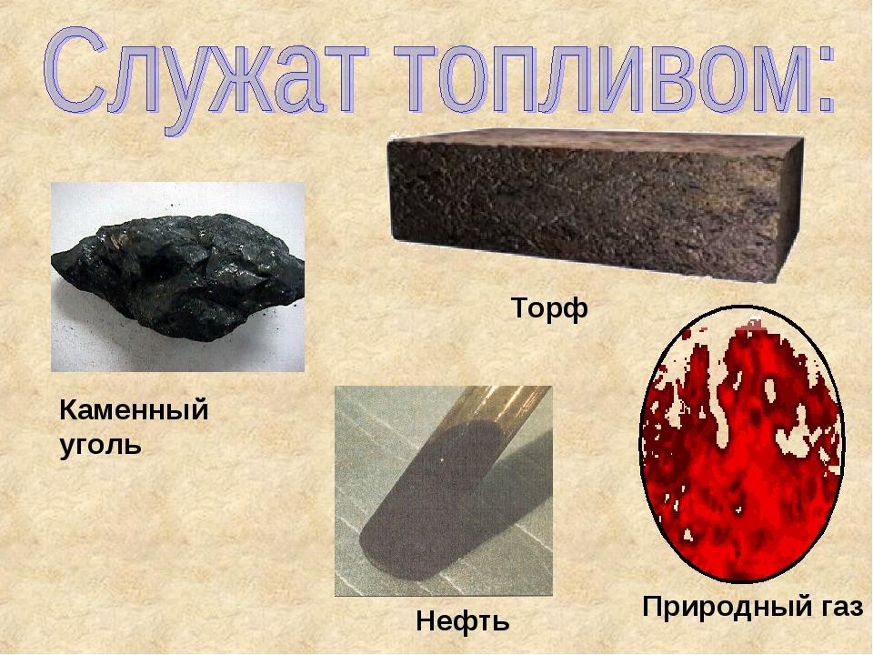 Каменный уголь Торф Нефть Природный газ