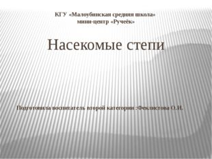 КГУ «Малоубинская средняя школа» мини-центр «Ручеёк» Насекомые степи Подготов