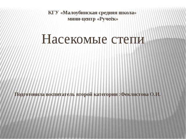 КГУ «Малоубинская средняя школа» мини-центр «Ручеёк» Насекомые степи Подготов...