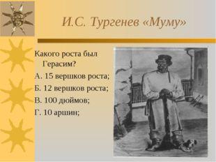 И.С. Тургенев «Муму» Какого роста был Герасим? А. 15 вершков роста; Б. 12 ве