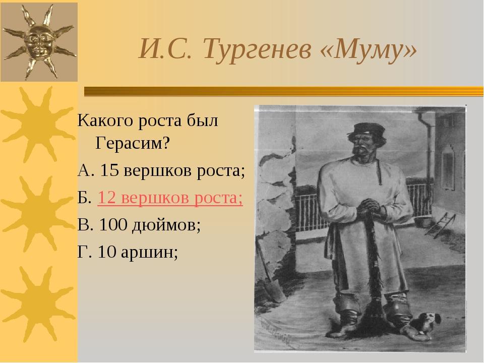 И.С. Тургенев «Муму» Какого роста был Герасим? А. 15 вершков роста; Б. 12 ве...