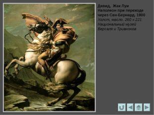 Жорж Руже Портрет Жака-Луи Давида 1813 – 1815 Коллекция Честера Дали, США
