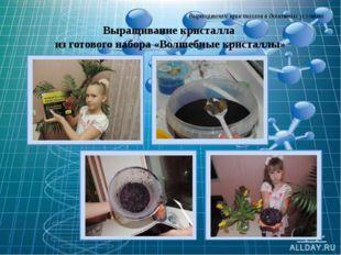 Выращивание кристаллов в домашних условиях Выращивание кристалла из готового