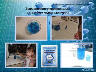 Выращивание кристаллов в домашних условиях Выращивание монокристалла из голуб