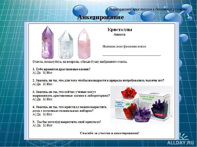 Выращивание кристаллов в домашних условиях Анкетирование Слайд 13. Я решила...
