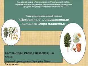 Городской округ «Александровск-Сахалинский район» Муниципальное бюджетное обр
