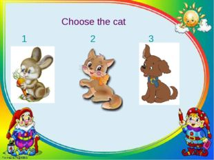 Choose the cat 1 2 3
