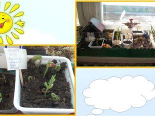 Есть у нас огород, Там капуста растет, И фасоль, и горох, Урожай у нас не пло
