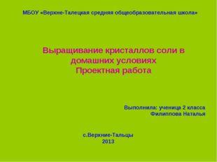 МБОУ «Верхне-Талецкая средняя общеобразовательная школа» Выращивание кристалл