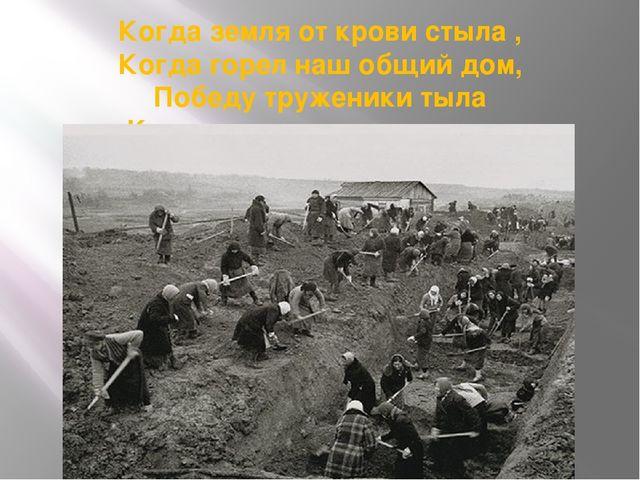 Когда земля от крови стыла , Когда горел наш общий дом, Победу труженики тыла...