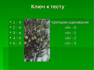 Ключ к тесту 1 – б 2 – б 3 – в 4 – б 5 – б Критерии оценивания «5» - 0 «4» -