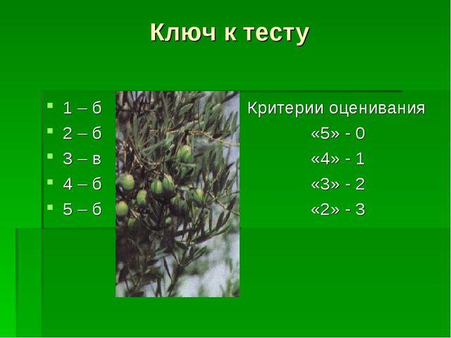 Ключ к тесту 1 – б 2 – б 3 – в 4 – б 5 – б Критерии оценивания «5» - 0 «4» -...