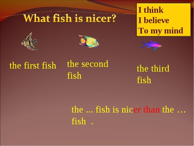 the first fish the second fish the third fish the ... fish is nicer than the...