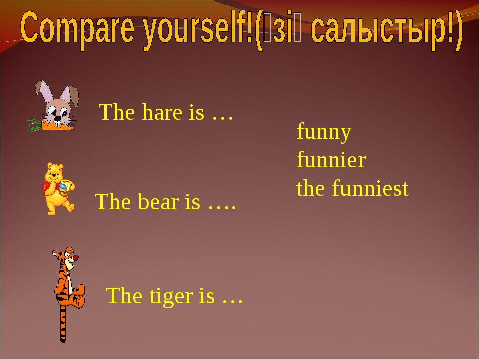 The hare is … The bear is …. The tiger is … funny funnier the funniest
