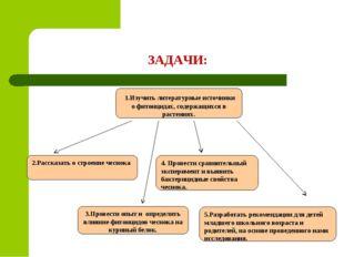 ЗАДАЧИ: 1.Изучить литературные источники о фитонцидах, содержащихся в растени