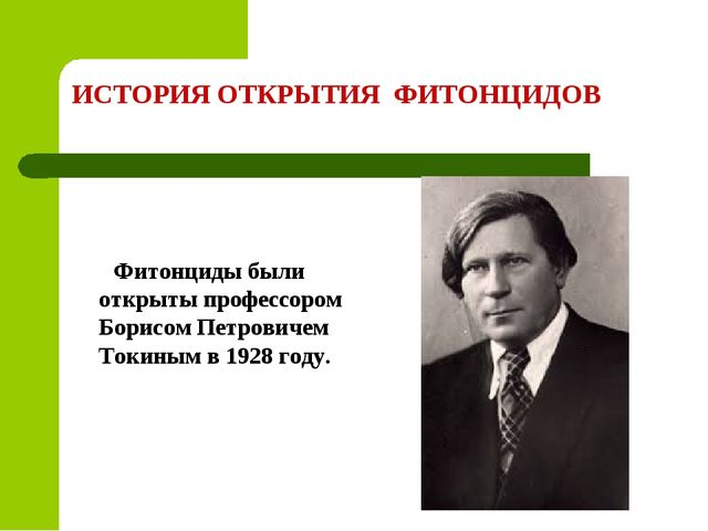 ИСТОРИЯ ОТКРЫТИЯ ФИТОНЦИДОВ Фитонциды были открыты профессором Борисом Петров...