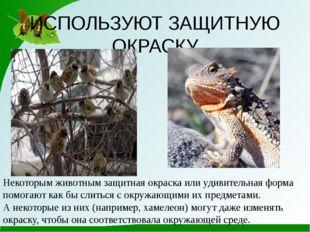 ИСПОЛЬЗУЮТ ЗАЩИТНУЮ ОКРАСКУ Некоторым животным защитная окраска или удивитель