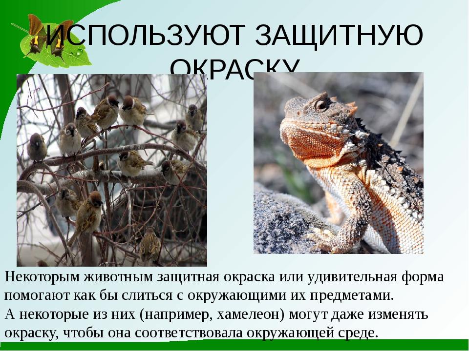 ИСПОЛЬЗУЮТ ЗАЩИТНУЮ ОКРАСКУ Некоторым животным защитная окраска или удивитель...