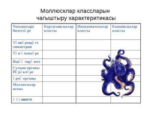 Моллюсклар классларын чагыштыру характеритикасы Чагыштыру билгеләре Корсагая