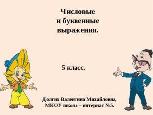 5 класс. Долгих Валентина Михайловна, МКОУ школа – интернат №5. Числовые и бу
