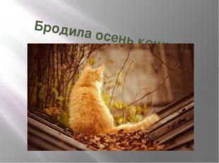 Бродила осень кошкой рыжей