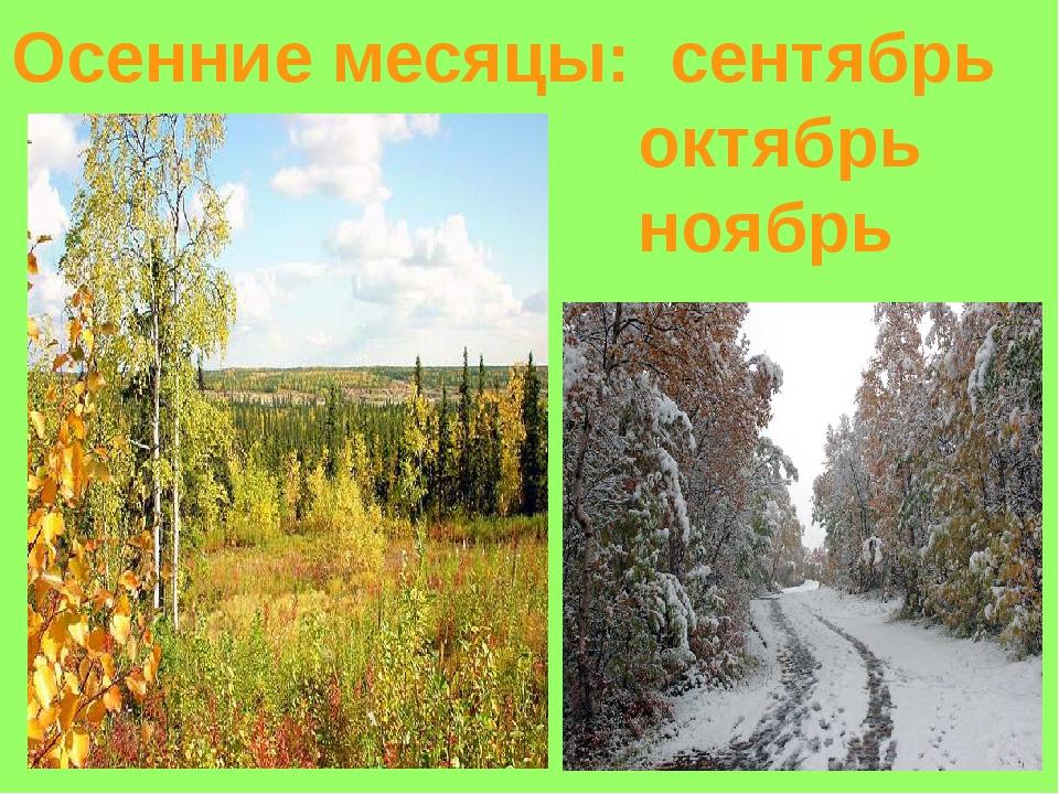 Осенние месяцы: сентябрь октябрь ноябрь