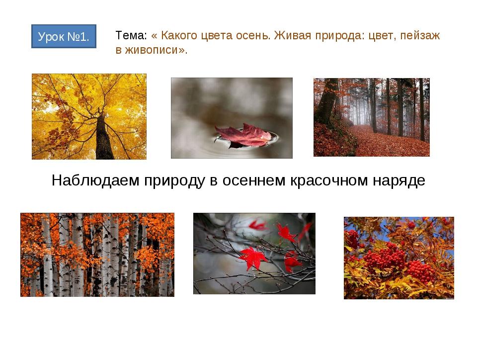 Наблюдаем природу в осеннем красочном наряде Урок №1. Тема: « Какого цвета ос...