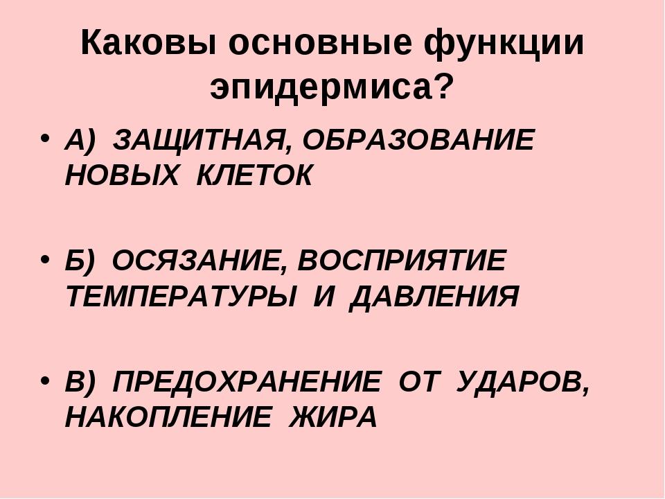 Каковы основные функции эпидермиса? А) ЗАЩИТНАЯ, ОБРАЗОВАНИЕ НОВЫХ КЛЕТОК Б)...