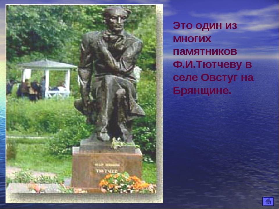Это один из многих памятников Ф.И.Тютчеву в селе Овстуг на Брянщине.