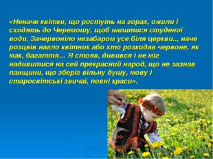 «Неначе квітки, що ростуть на горах, ожили і сходять до Черемошу, щоб напитис
