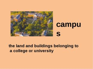 campus the land and buildings belonging to a college or university