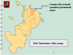 Северо-Восточный административный округ Моё Лианозово. Моя улица.