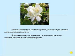 Многие любители для ароматизации чая добавляют туда лепестки цветков комнатн