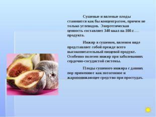 Сушеные и вяленые плоды становятся как бы концентратом, причем не только угл