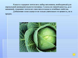 Капуста содержит почти весь набор витаминов, необходимый для нормальной жизн