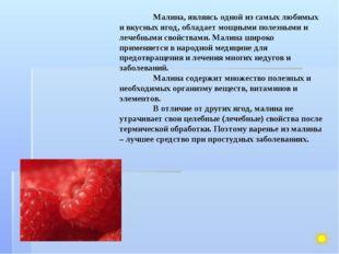 Малина, являясь одной из самых любимых и вкусных ягод, обладает мощными поле