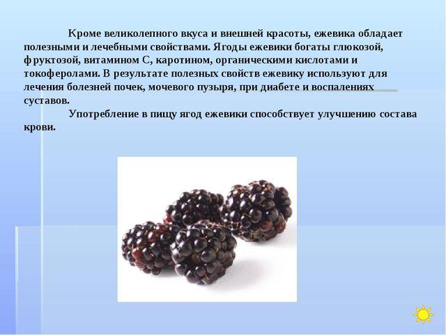 Кроме великолепного вкуса и внешней красоты, ежевика обладает полезными и ле...