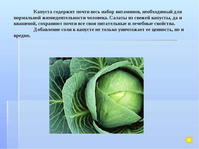 Капуста содержит почти весь набор витаминов, необходимый для нормальной жизн...
