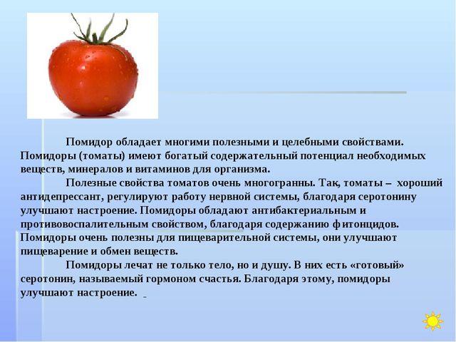 Помидор обладает многими полезными и целебными свойствами. Помидоры (томаты)...
