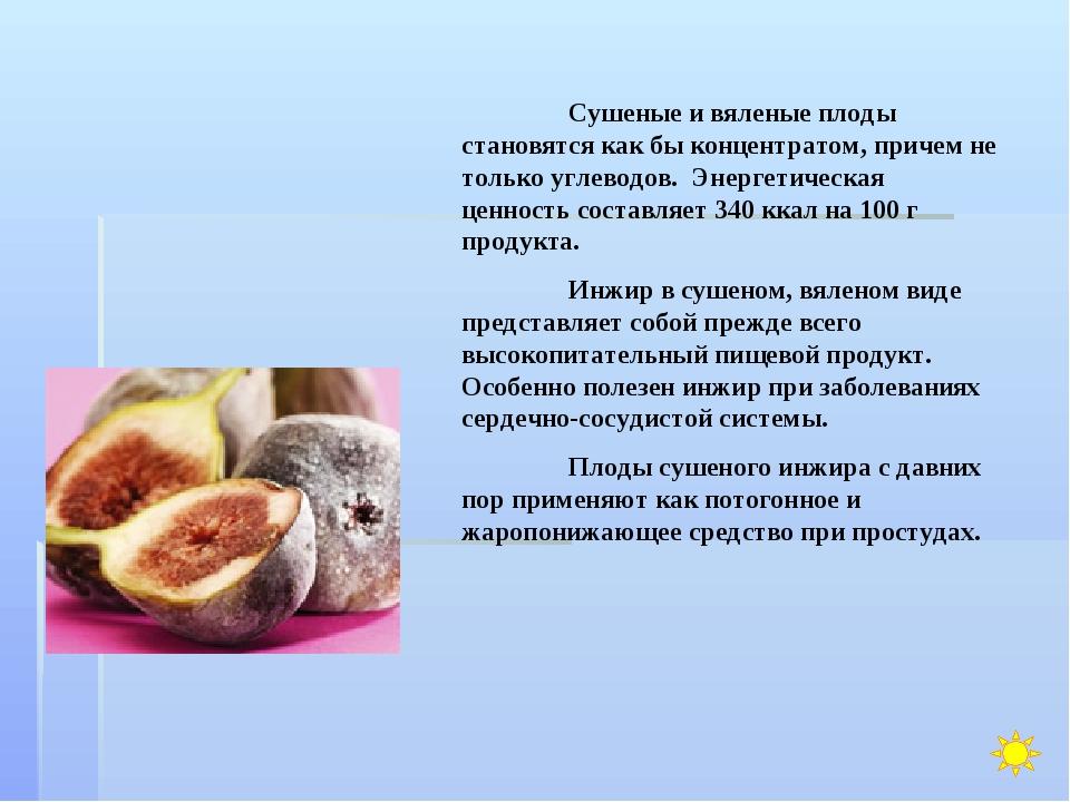 Сушеные и вяленые плоды становятся как бы концентратом, причем не только угл...