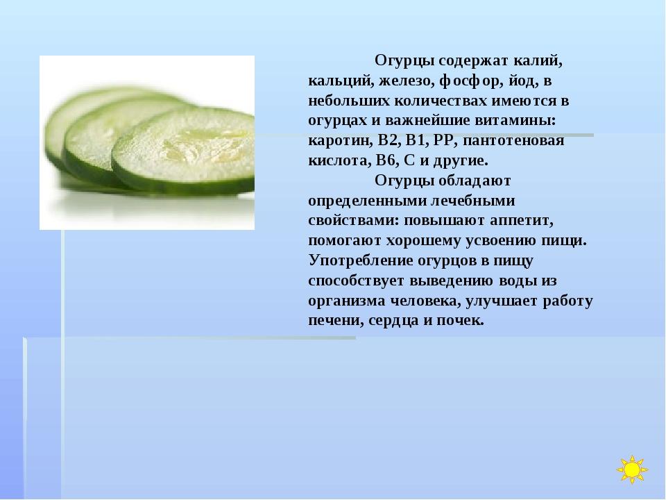 Огурцы содержат калий, кальций, железо, фосфор, йод, в небольших количествах...