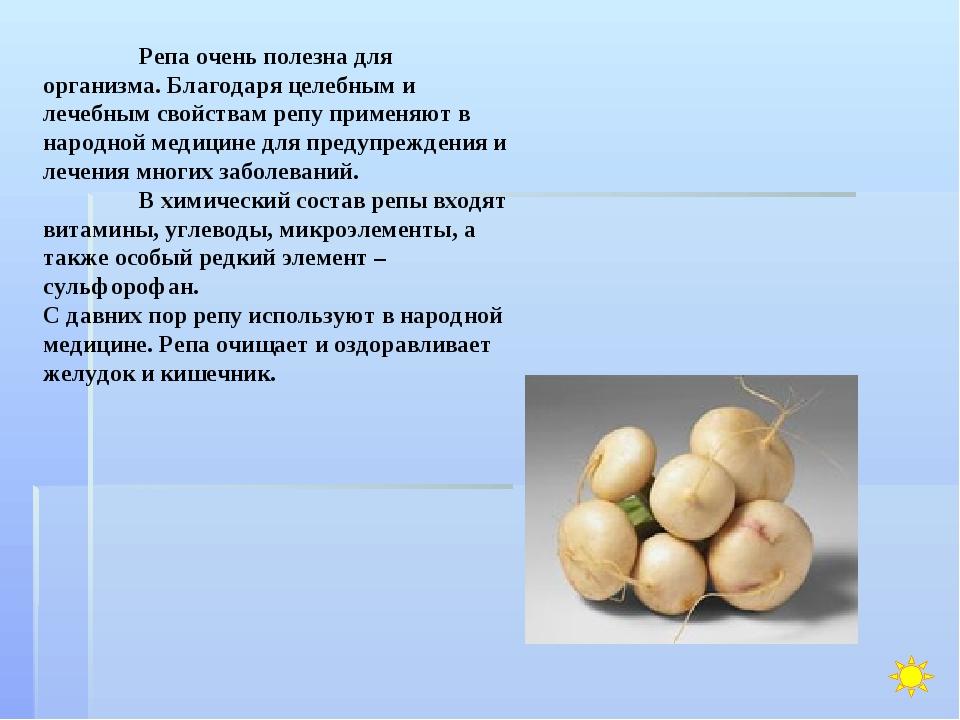 Репа очень полезна для организма. Благодаря целебным и лечебным свойствам ре...