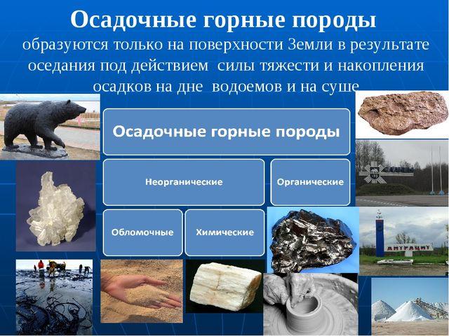 Осадочные горные породы образуются только на поверхности Земли в результате о...