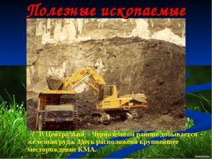 Полезные ископаемые В Центрально – Черноземном районе добывается железная руд