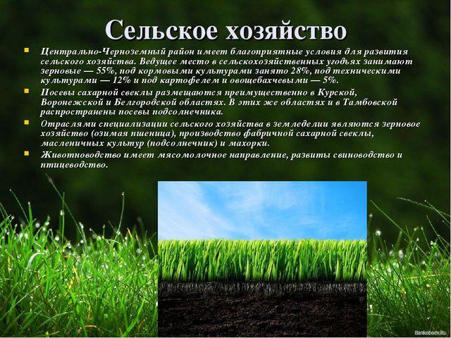 Сельское хозяйство Центрально-Черноземный район имеет благоприятные условия д...