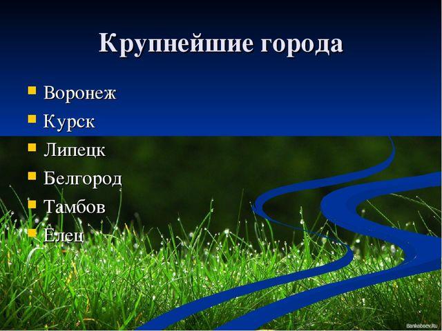 Крупнейшие города Воронеж Курск Липецк Белгород Тамбов Елец