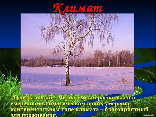 Климат Центральный – Чернозёмный расположен в умеренном климатическом поясе,...