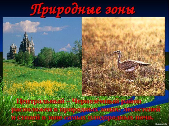 Природные зоны Центральный – Чернозёмный район расположен в природных зонах:...