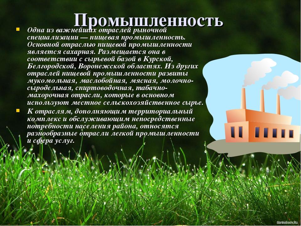Промышленность Одна из важнейших отраслей рыночной специализации — пищевая пр...