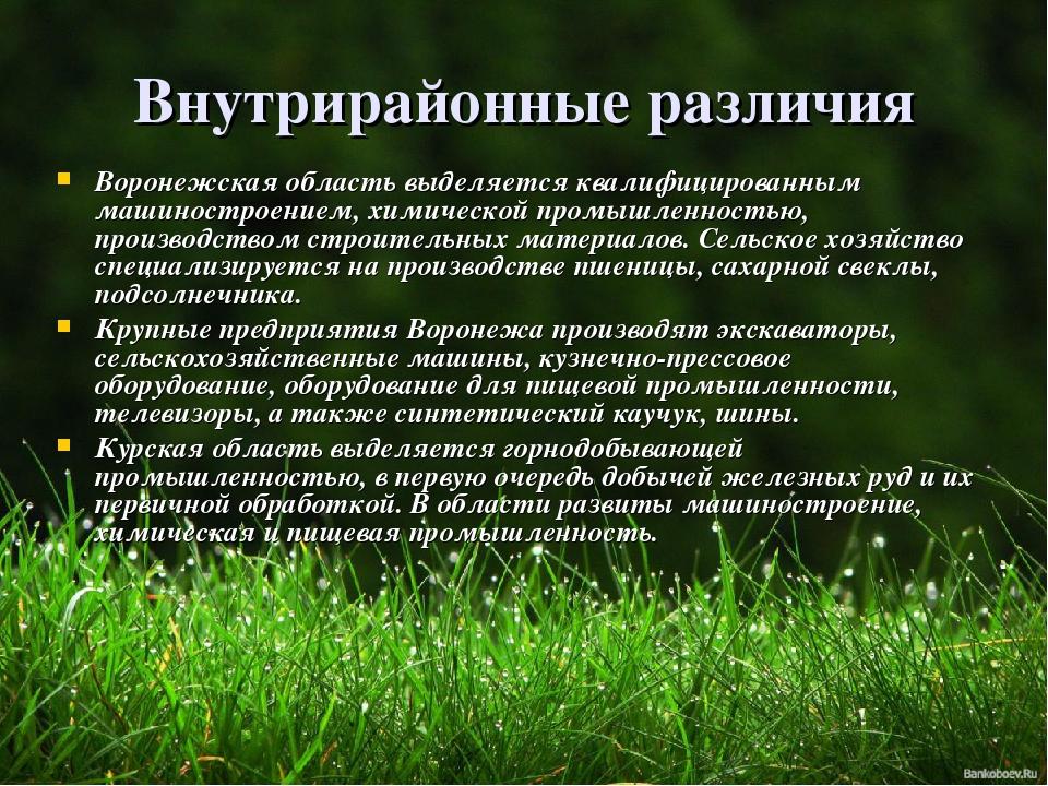 Внутрирайонные различия Воронежская область выделяется квалифицированным маши...